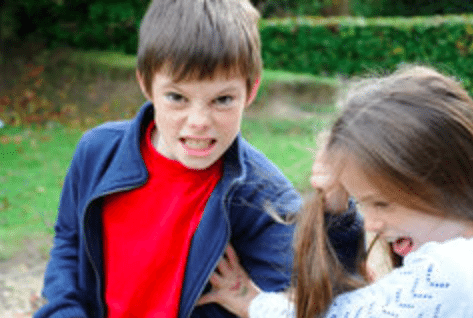 Is It Sibling Rivalry Or Bullying >> When Is It Sibling Rivalry And When Is It Bullying Susan